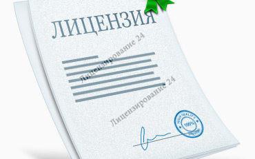 Пример лицензии промышленности