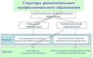 Структура ДПО