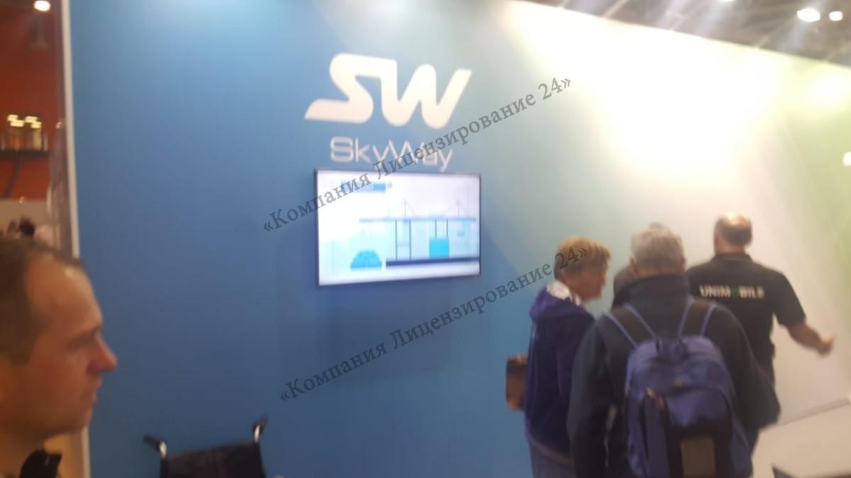 skyway на инваэкспо